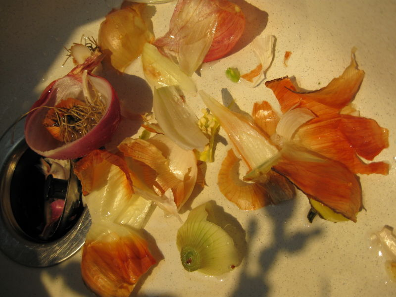 onion art!