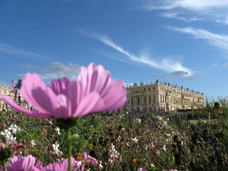 The garden in Versailles 2