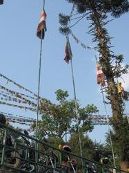help Nepal 9