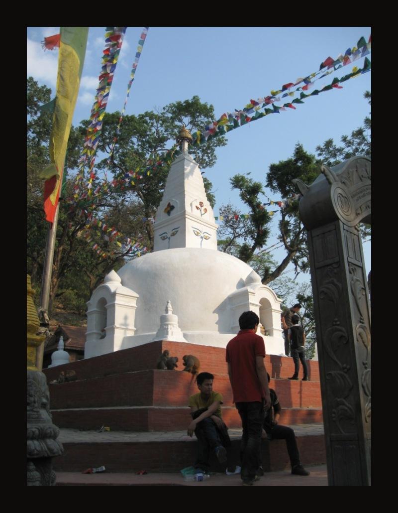 help Nepal 15