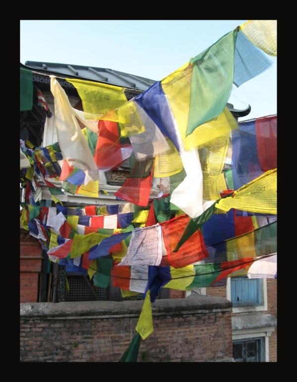 help Nepal 25