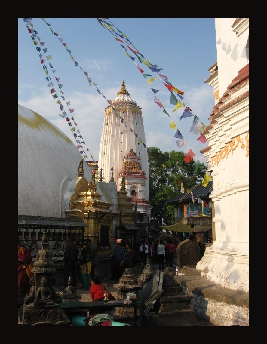 help Nepal 28