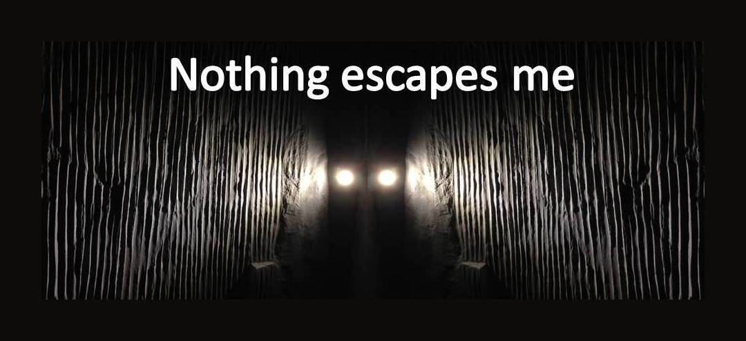 nothing escapes me