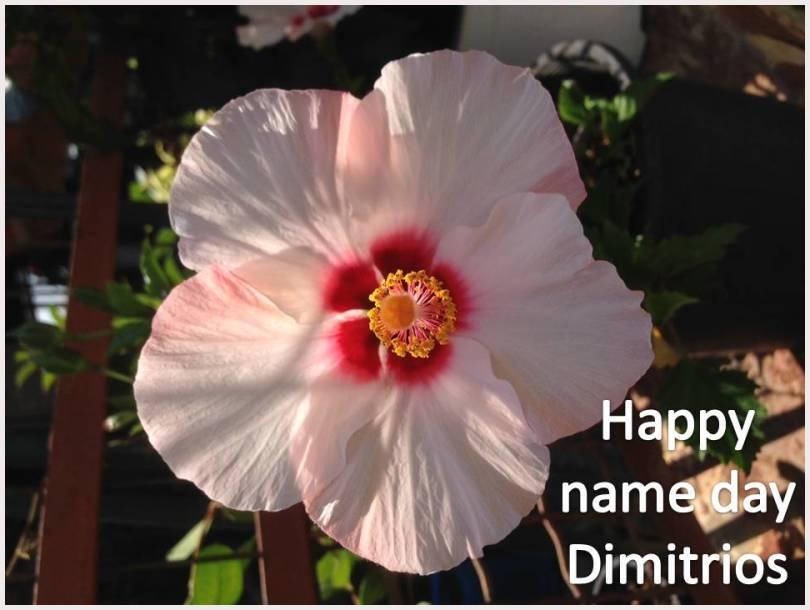 Saint Dimitrios day today!
