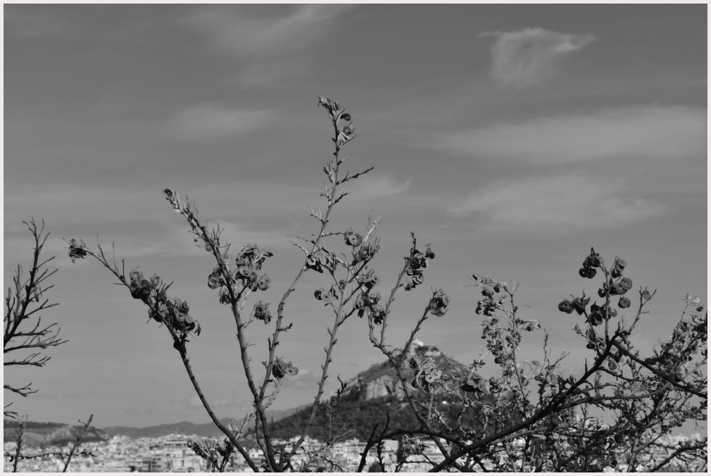 Athens in B&W: 52