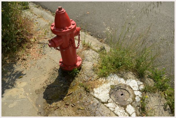 water guardian 1