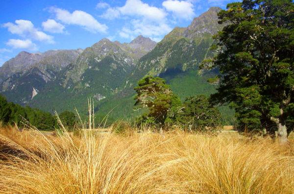 New Zealand (re-edited)
