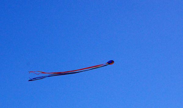 Kites flying at Sengkang town in Singapore
