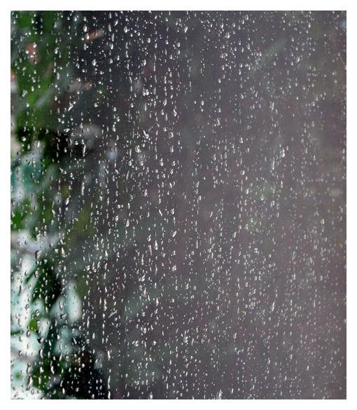 Rain drops on windows