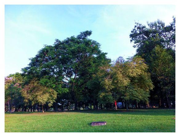 Punggol Park, Singapore