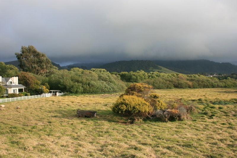 A wagon in a field