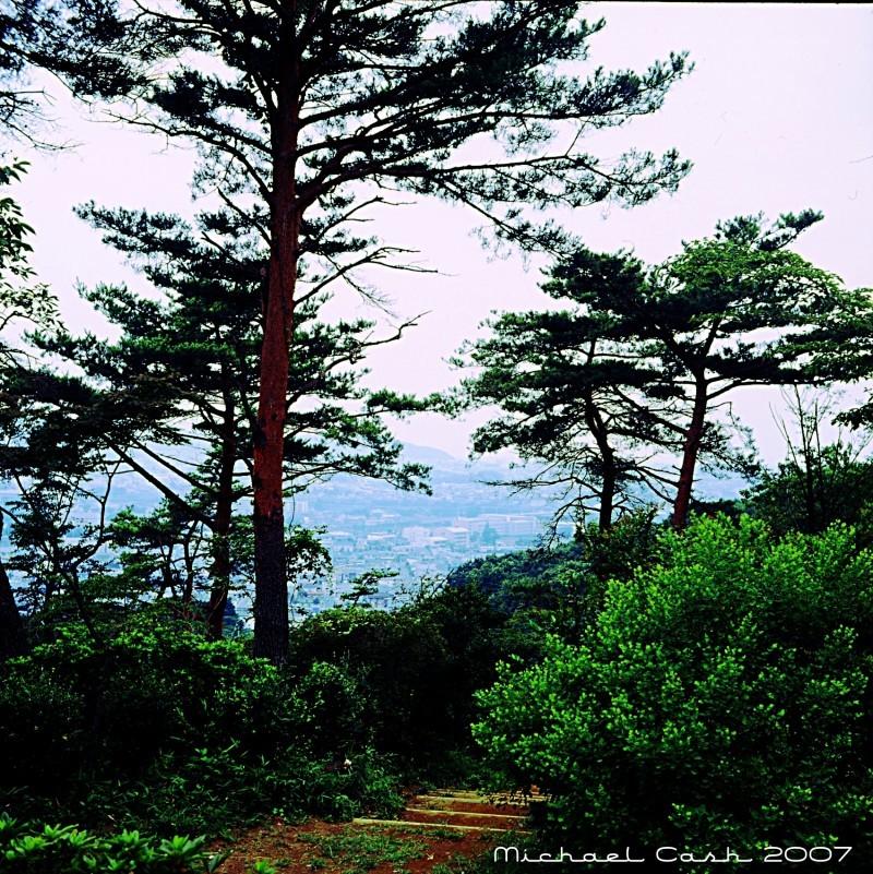 View from Azuma Park, Kiryu City, Gunma Japan