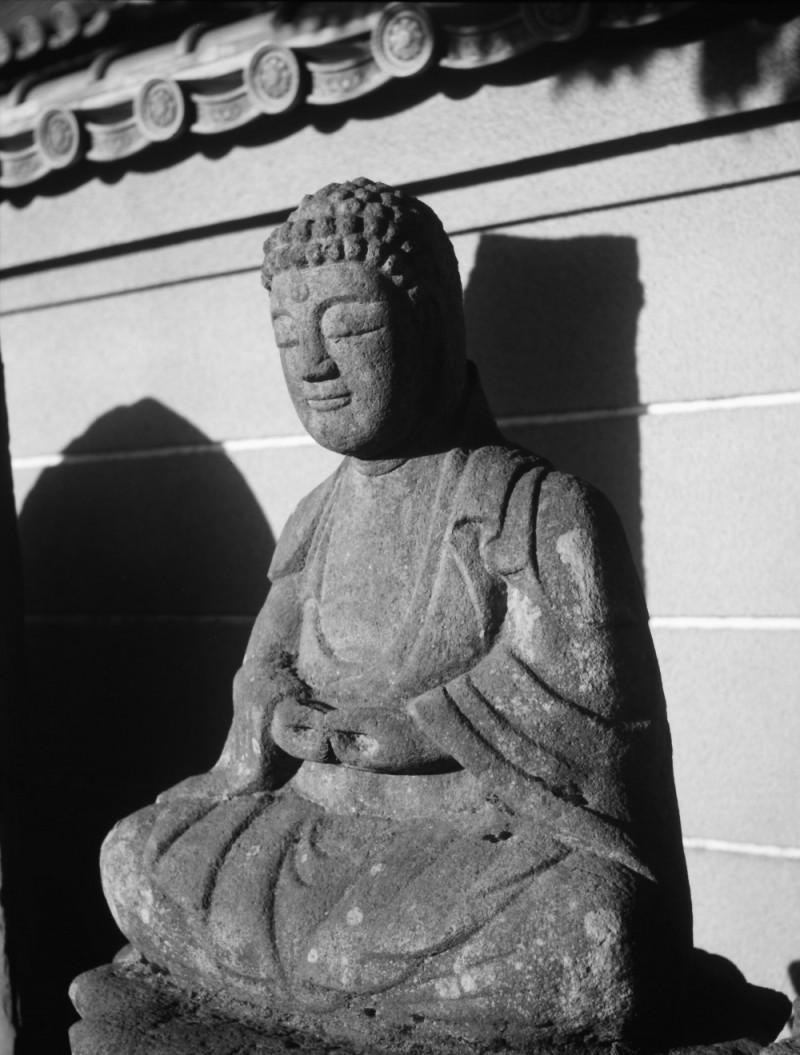 20 Megapixel Buddha