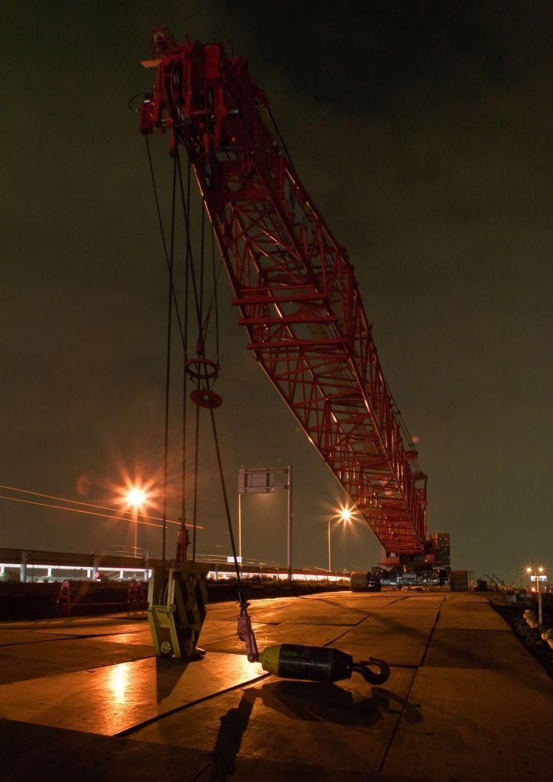 Night Crane I