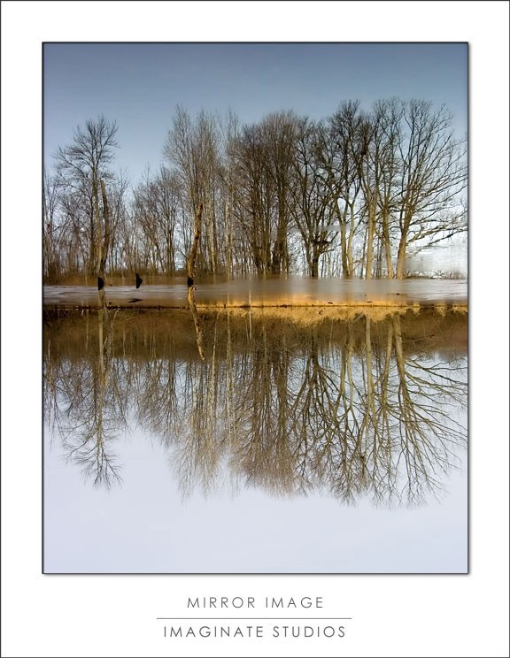 Woldumar Park Lake