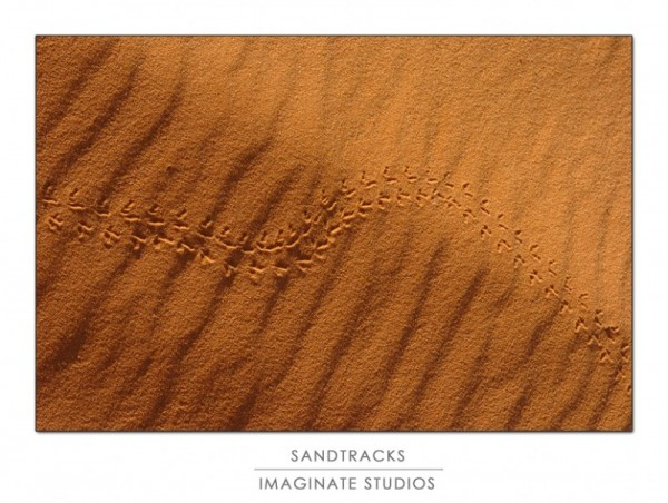 tracks across the desert valley floor