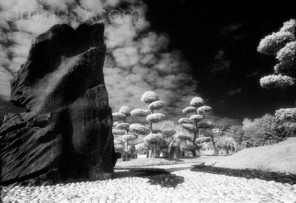 Infrared World