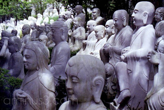 The Faces of Buddha