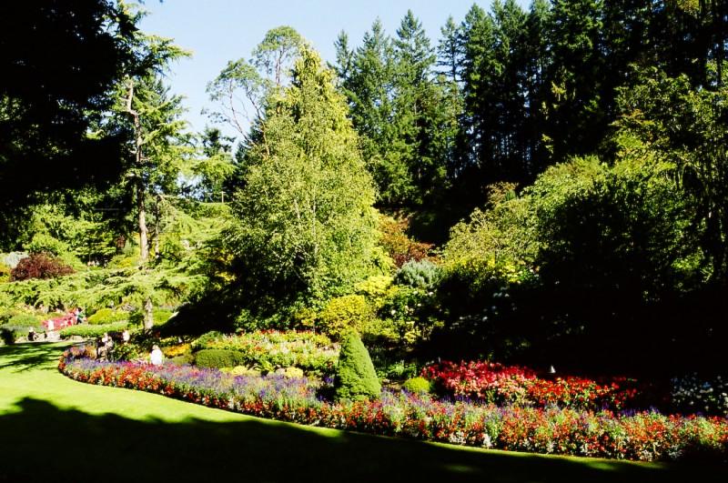 Butchart's Gardens -- Sunken Garden III