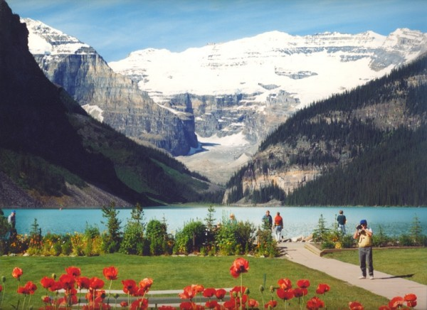 Lake Louise From The Chateau Gardens