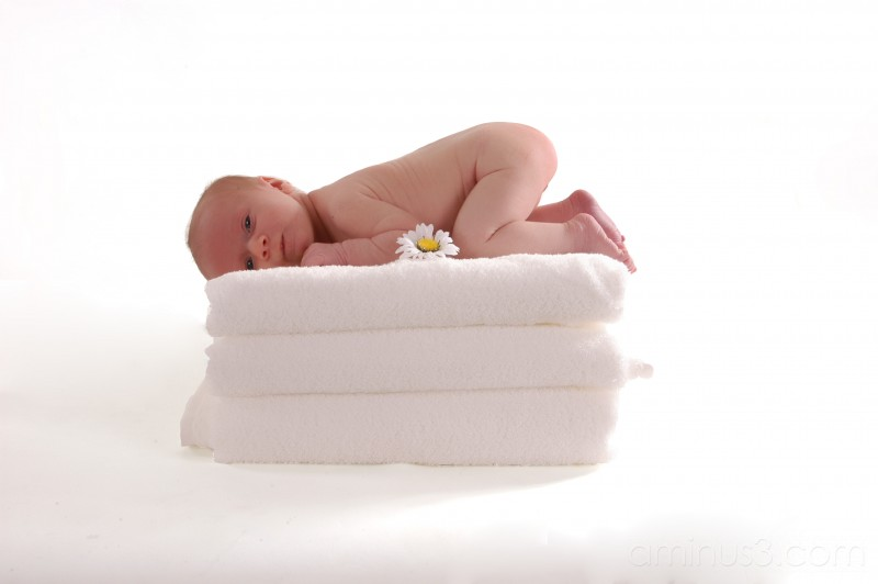 My new niece, Amy Dawn.  Born Nov.10 2006
