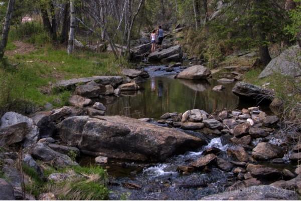 "Stream landscape ""Black Hills"""