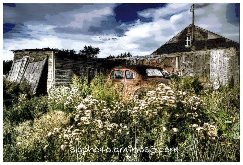 Wolsley Saskatchewan  Farm-life