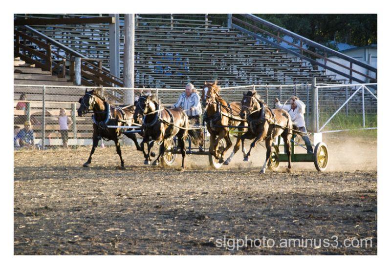 austin Manitoba Rodeo Canada horse rider chuckwago