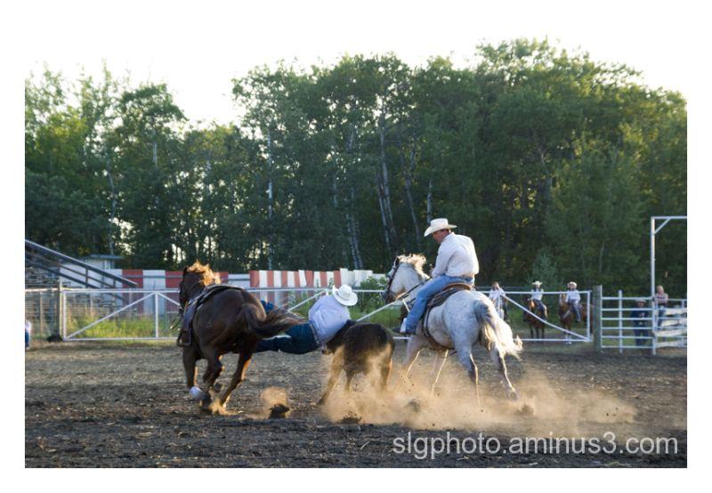 austin Manitoba Rodeo Canada horse rider
