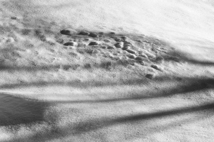 Snow shadows by Benno White