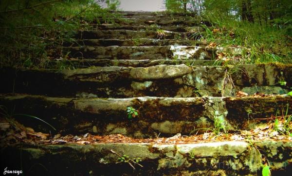 Wonderland Hotel Stairs