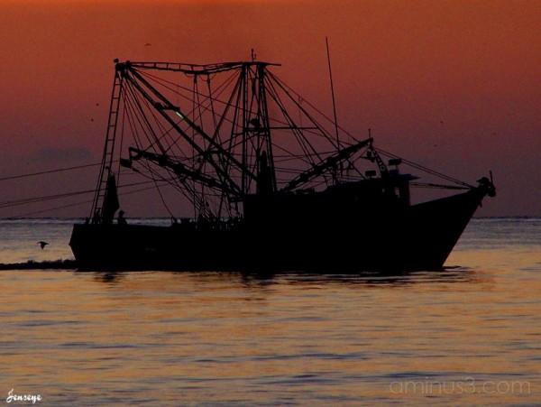 Shrimp Boat Tybee Island GA