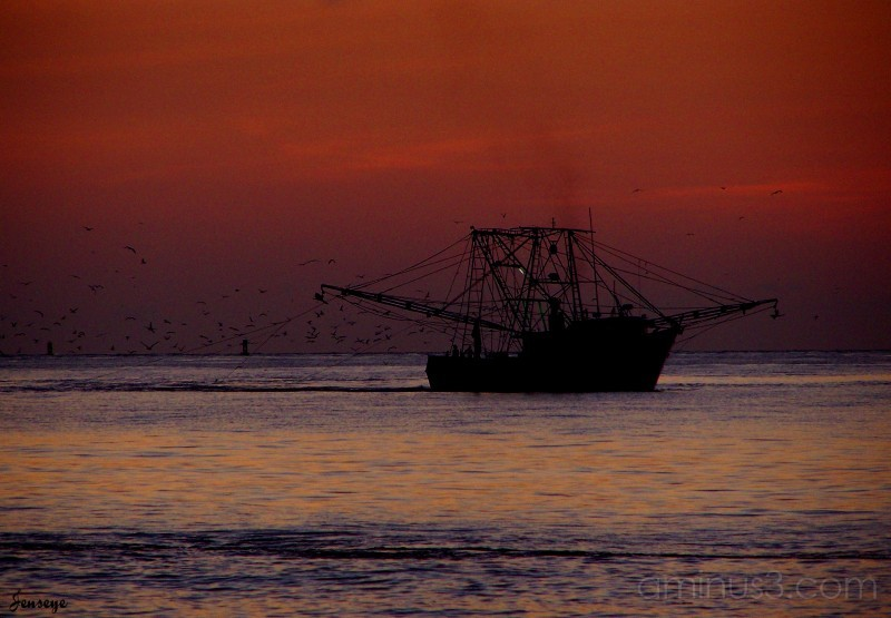 Sunrise Shrimp Boat