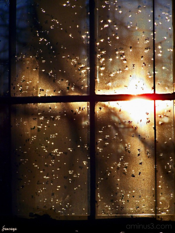 Rainy Screen window