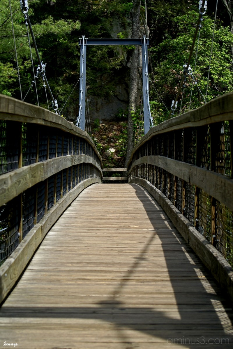 Walking Bridge Tallulah Gorge State Park