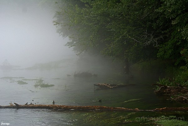 Chattahoochee River Johns Creek Georgia