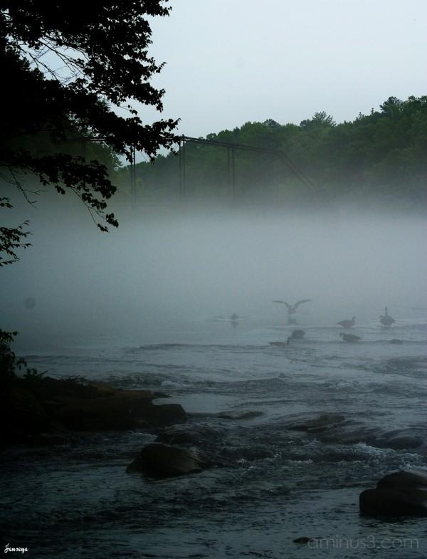 Chattahoochee River AlpharettaGe orgia