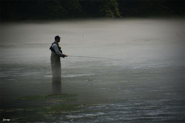 Chattahoochee River Fly Fishing Mist Fog Rock Tree