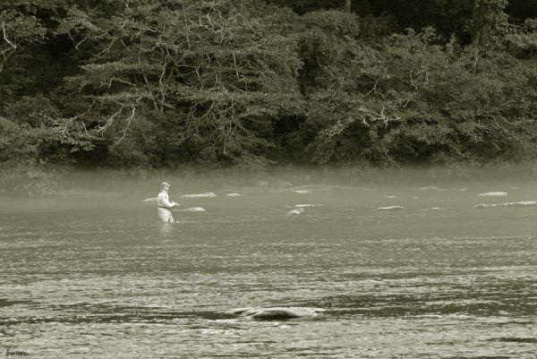 Landscape Fly Fishing Chattahoochee River Georgia