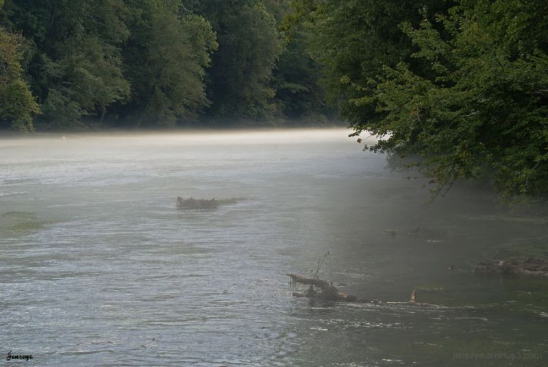 Chattahoochee River Georgia Mist Fog Fly Fishing