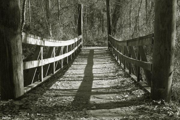 Bridge Chattahoochee B&W Woods Jones Bridge