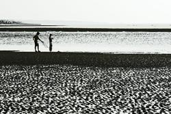 Black and White Beach Fishing St. Simons Georgia