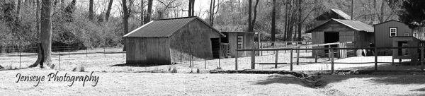 Landscape Farm Barn Loris