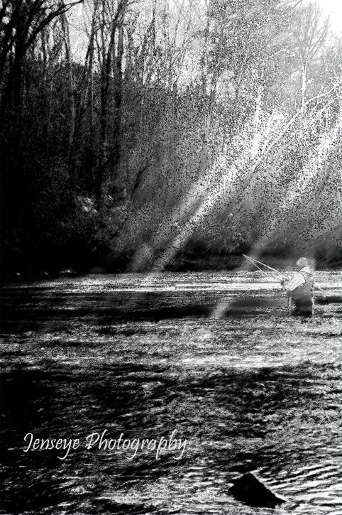 Fishing Lake Sun Rays Lake Lanier