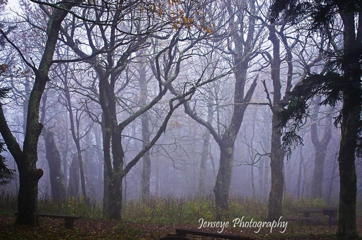 Landscape Fog Blue Ridge Parkway North Carolina