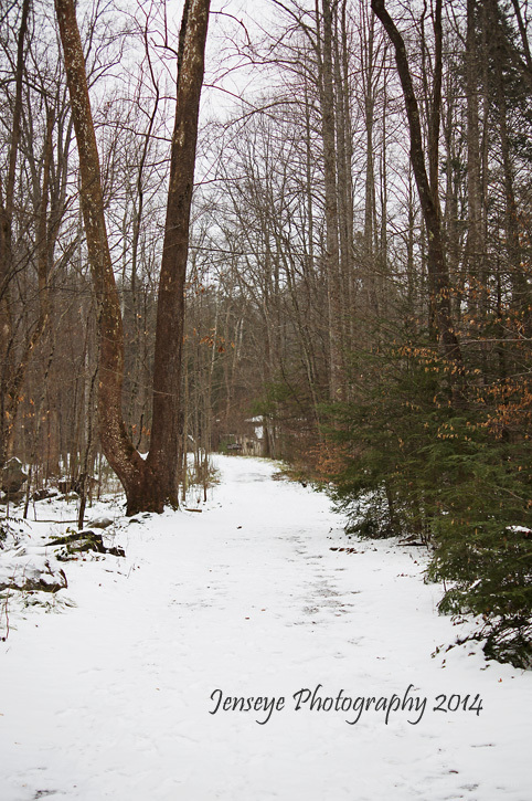 Great Smoky Mountains Jacks Creek Trail