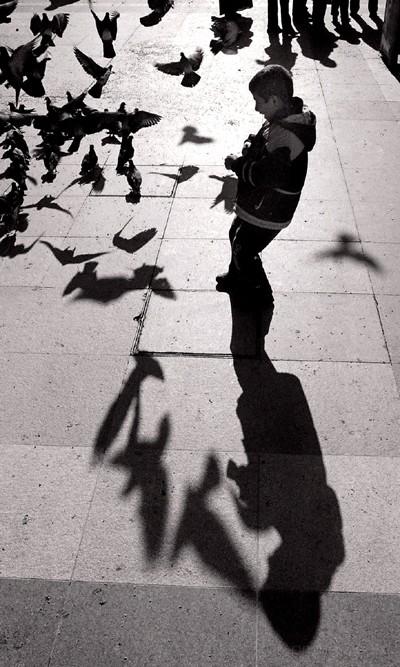 Boy scaring pigeons & himself, eminonu, istanbul