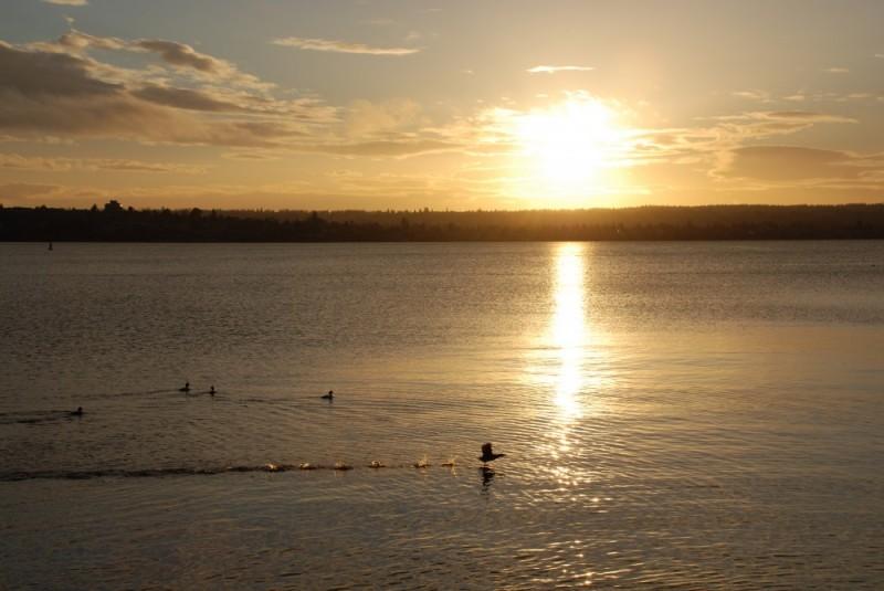 sunset at English Bay -- MERRY CHRISTMAS EVERYBODY