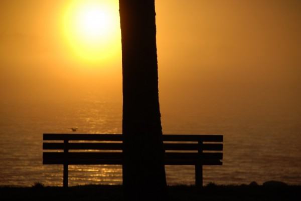fog at the beach 2