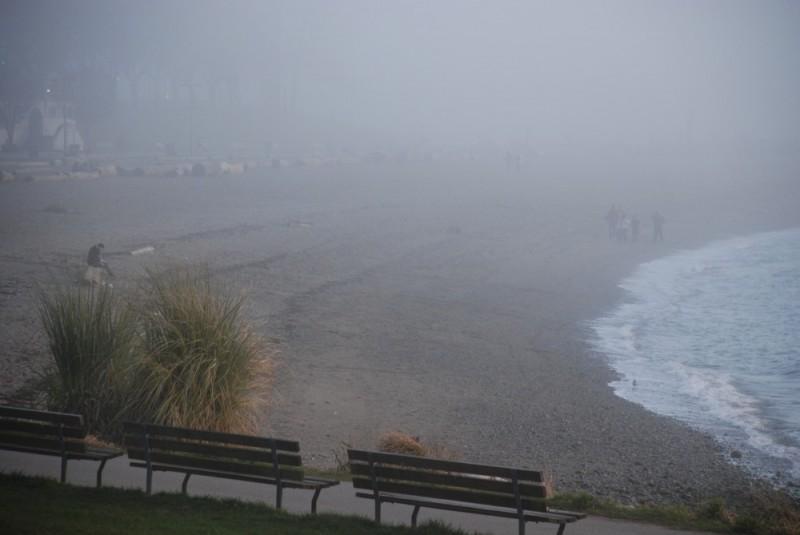 fog at the beach 3